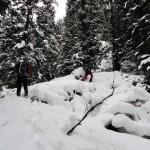 Slika 2: Po strmem gozdu proti vhodu.