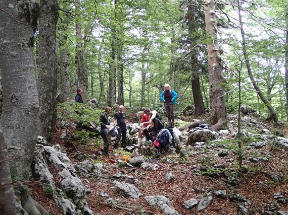 Intenziven pregled terena. Foto: J. J. Cerar
