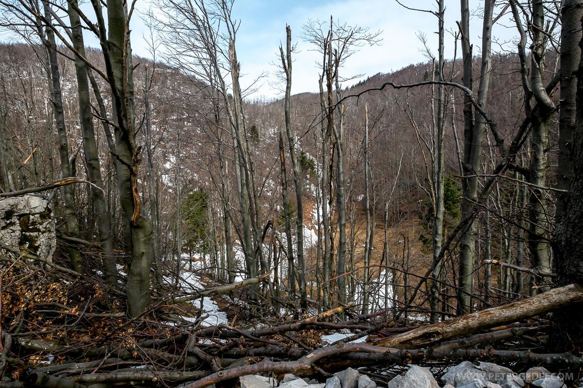 Trnovski gozd severno od vasi Otlica