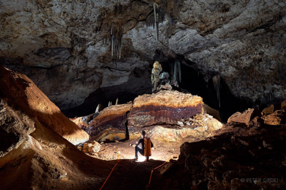 Tortica v jami Slaughter Canyon Cave . Foto: Peter Gedei